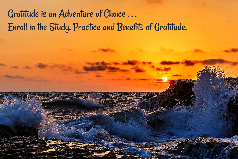 Gratitude Enrollment